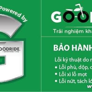 Vỏ xe Goodride H990 100/80-17